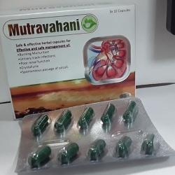 Mutravahani